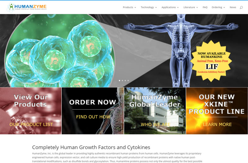 HumanZyme Inc Website Launched